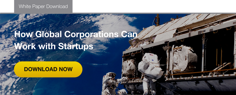 How Global Corporations Can Work With Startups